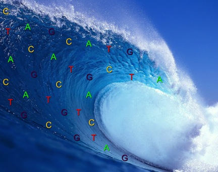 A tidal wave of population genomic data